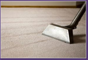 Gooses Commercial Carpet Cleaning Folsom Cleaner